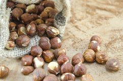 Hazelnuts in a vintage bag Royalty Free Stock Images