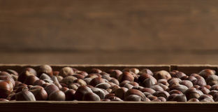 Hazelnuts w drewnianym pudełku Obrazy Royalty Free