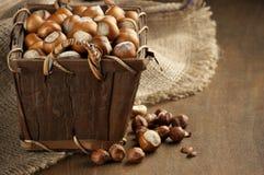 Hazelnuts w koszu Obrazy Stock