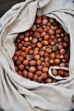 Hazelnuts w torbie Zdjęcia Royalty Free