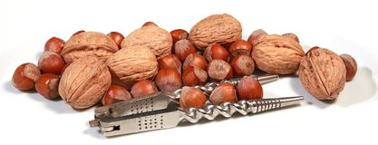 Hazelnuts and walnuts Royalty Free Stock Images