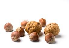 Hazelnuts and walnuts Stock Photos