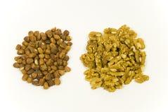 hazelnuts and walnuts Royalty Free Stock Photos