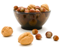 Hazelnuts and walnuts Royalty Free Stock Photo