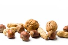 Hazelnuts, walnuts, peanuts Stock Image