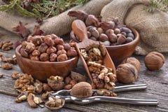 Hazelnuts and walnuts Stock Photo