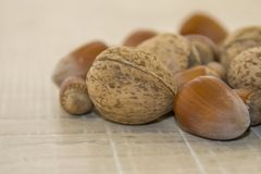 Hazelnuts and walnuts on a wooden base. Fallen fruits, hazelnut and nuts in a shell on a wooden base Royalty Free Stock Image