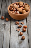 Hazelnuts and walnuts in a wooden bowl Stock Image