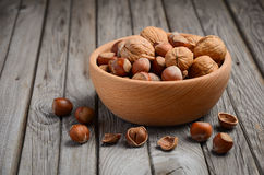 Hazelnuts and walnuts in a wooden bowl Stock Images