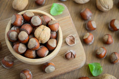 Hazelnuts and walnuts in a wooden bowl Royalty Free Stock Image