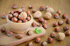 Hazelnuts and walnuts in a wooden bowl Royalty Free Stock Photography