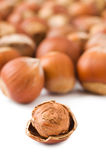 Hazelnuts on white Royalty Free Stock Photo