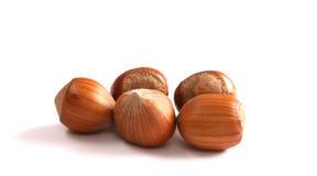 Hazelnuts on white. Royalty Free Stock Images