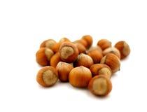 Hazelnuts on white Stock Image