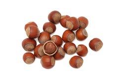 Hazelnuts on white background Royalty Free Stock Image