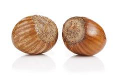 Hazelnuts Stock Photo