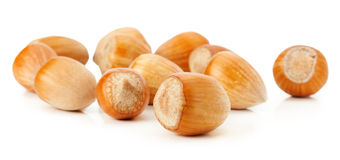 Hazelnuts  on the white background Stock Images