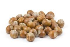 Hazelnuts on white background Royalty Free Stock Images