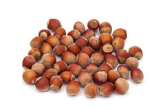 Hazelnuts on a white background Royalty Free Stock Photo