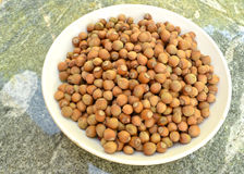 Hazelnuts in a white bowl. Royalty Free Stock Images
