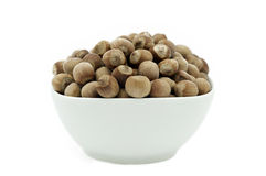 Hazelnuts in a White Dish, Front View royalty free stock image