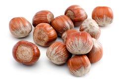 Hazelnuts  on white Stock Images