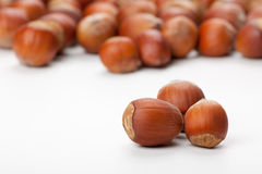 Hazelnuts on white surface Royalty Free Stock Image