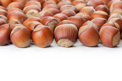 Hazelnuts on white surface Stock Photography