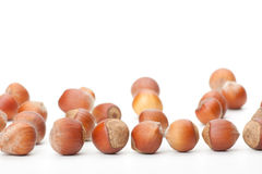 Hazelnuts on white surface Stock Image