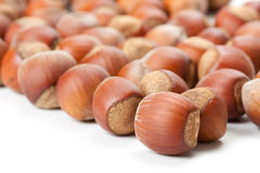 Hazelnuts on white surface Royalty Free Stock Photography