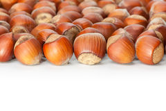 Hazelnuts on white surface Royalty Free Stock Photo