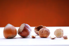 Hazelnuts on a white table and background brown front view Royalty Free Stock Photos