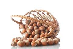 Hazelnuts in a wicker basket Stock Image
