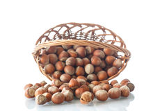 Hazelnuts in a wicker basket Royalty Free Stock Images