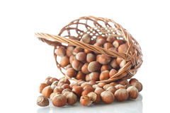 Hazelnuts in a wicker basket Stock Images