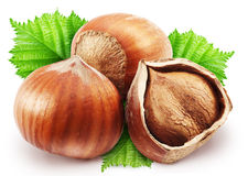 Hazelnuts With Leaves On A White Background. Royalty Free Stock Images