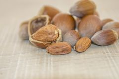 Hazelnuts on a wooden base Stock Images