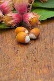 Hazelnuts on wooden board Stock Photo
