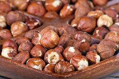 Hazelnuts in a wooden bowl Royalty Free Stock Images