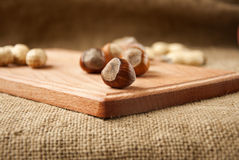 Hazelnuts in wooden bowls on wooden and burlap, sack background Stock Images