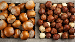 Hazelnuts in wooden box Stock Photo