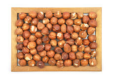 Hazelnuts in wooden frame stock photography