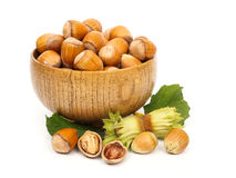 Hazelnuts in wooden pot Stock Images