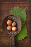 Hazelnuts on wooden spoon. Group of hazelnuts on wooden spoon and green leaves Stock Photo