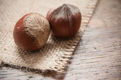 Hazelnuts on wooden table background Royalty Free Stock Photo