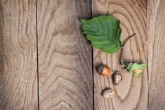 Hazelnuts on the wooden table Stock Photo