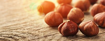 Hazelnuts on wooden table Stock Image