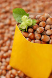Hazelnuts in yellow package Stock Image
