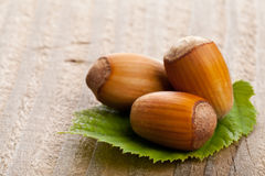 Hazelnuts z hazelnut liściem na drewnianym tle Zdjęcia Stock