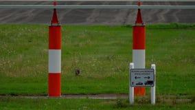 Hazen dichtbij baan van de luchthaven van Dusseldorf stock videobeelden